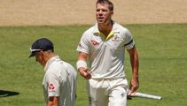 'Half the players' can't stand David Warner