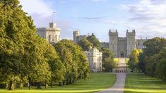 Bev Coombridge: 25 lucky school kids receive invites to Royal Wedding