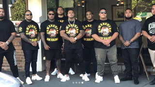 'Cut the head off the snake': Bold plan to combat NZ's gangs