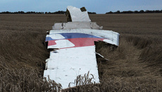 Peters: Russian role in MH17 disaster 'deeply concerning'