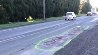 In order to draw attention to a number of potholes on Kahikatea Flat Road, Geoff Upson drew large green penises around the potholes. Source: Geoff Upson
