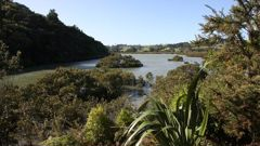 At issue was the position of the rural urban boundary near the Okura Estuary - a controversy that has been running since 2003. (Photo / NZ Herald)