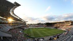 Auckland's hospitality sector buzzing ahead of All Blacks test