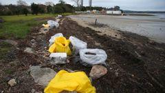 Bags of oil contaminated material line the beach on the Matapihi side of the rail bridge on Monday morning. (Photo / John Borren)