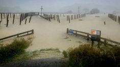 Louise Bennett: Weather eases for Gisborne