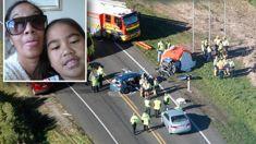 Newborn baby and 8-year-old among seven dead in Waverley, Taranaki crash, worst fatal in 13 years