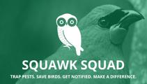 Cool New Stuff: New Zealand Birds