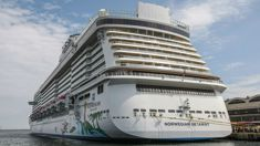 Cruise ship worker survives 22 hours treading water