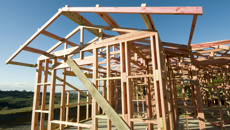 Mike's Minute: Twyford's Kiwibuild dream is falling apart