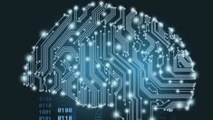 Liz Maguire: Artificial intelligence creeping into customer service