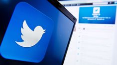 Twitter stock plummets as fake account cull worries traders