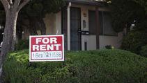 Calls for govt to scrap short-term rental laws