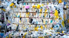 Simon Upton: Confusion around biodegradable plastic