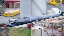 Whalers accused of killing a rare 'blue whale' off Iceland