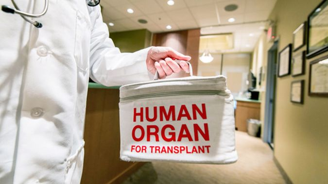 Professor Phillipa Malpas says  there's a strong likelihood that a small number of patients will travel from New Zealand to China each year to receive an organ. Photo \ Getty Images