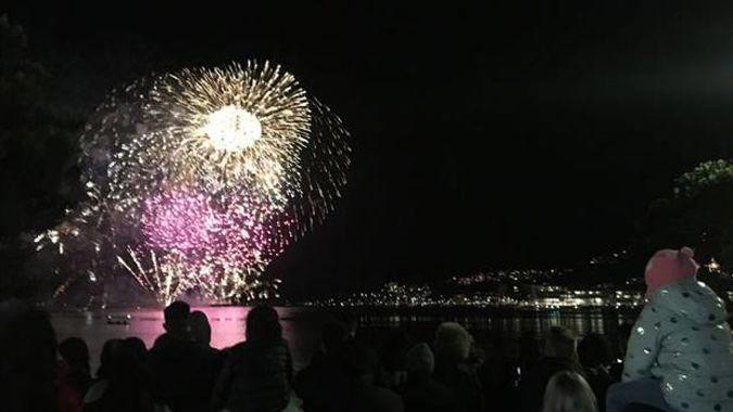 Wellington's first Matariki fireworks go ahead, whale-free