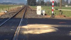 Person seriously injured after car and train collide near Kawerau