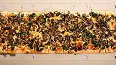 Toto Pizza put in liquidation, owes Inland Revenue, other creditors more than $1 million
