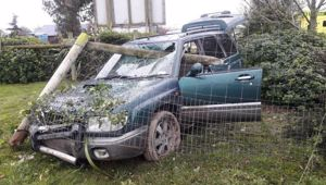 The aftermath of the high speed crash on June 2 when this vehicle went through a dog park fence. (Photo / Star.kiwi)