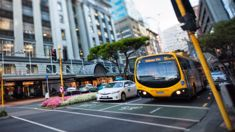 Busy day for Wellington bus strike