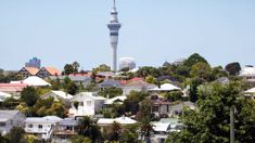 Supply up, rents down in central Auckland