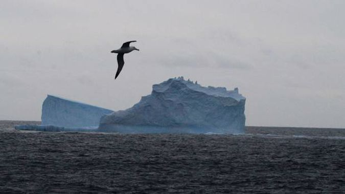 The Southern Ocean sucks up 40 per cent of the CO2 that humans send in to the atmosphere - but for how much longer? (Photo / File)