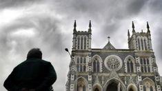 Catholic Church 'failed in a very serious way': International Expert