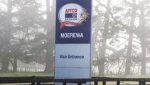 Affco denies culture of fear at Moerewa plant