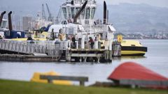 The item was pulled from the water at Salisbury Wharf in Mount Maunganui. Photo / George Novak