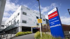 Rees Tapsell: DHB mental health units struggling to keep up with demand