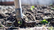 Man who threaten to bury neighbours in his garden jailed