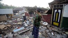 Rosemarie North: Red Cross makes appeal as Lombok death toll hits 300