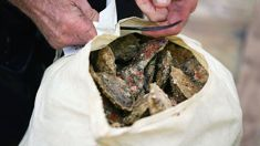Rodney Clark: Oyster farmers waiting for compensation