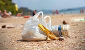 Litter is your problem, not a bag. Photo \ NZ Herald