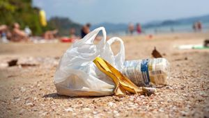 Litter is your problem, not a bag. Photo \ NZ Herald
