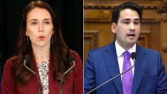 Jacinda Ardern: Labour didn't leak Simon Bridges' travel bill