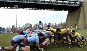 Gyms have replaced traditional sports like Rugby and Cricket. (Photo / Getty Images)