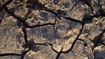 Help offered for drought-hit Aussie farmers