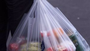 """""""It is a much more important story in the scheme of things than a single plastic bag deserves to have."""" Photo \ NZ Herald"""