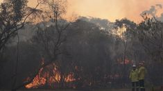 Murray Olds: Out of control bushfires force NSW residents to evacuate