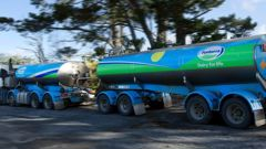 Board director Scott St John said the dairy co-operative has enormous opportunities but also faces profound challenges. Photo / File