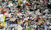 Andrew Dickens: Greens' rubbish response too simplistic