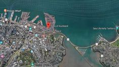 Person critically injured at Auckland port
