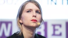 National: Chelsea Manning should not be allowed into New Zealand