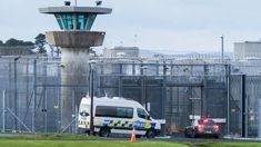 Video shows inmates' attack on guards at Auckland Prison before alleged retaliation