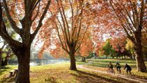 Mike Yardley: Riverside in Albury, NSW
