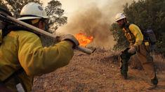 Tony Groome: Kiwi fire crews in California heading home