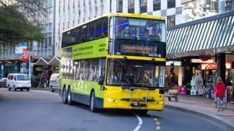 Support for Wellington Council's new approach to bus issues