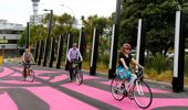 The cycle lanes are a prime example of councils telling us how we should live. Photo / NZ Herald