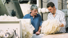 Spotlight on wool's future with industry in crisis